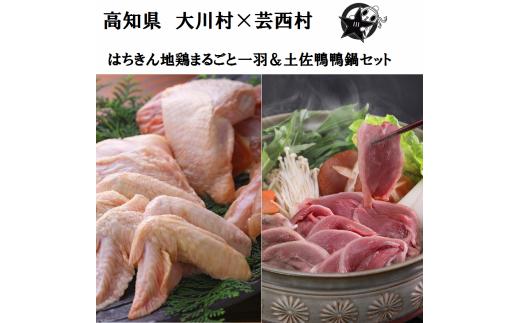 【大川村と芸西村の共通返礼品】はちきん地鶏まるごと一羽おためしセット約1kg&土佐鴨鴨鍋セット 4〜5人用