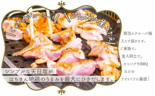 大川村土佐はちきん地鶏バーベキューセット