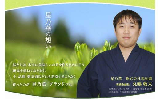【S-002】八女伝統本玉露:星乃しずく茶Cセット