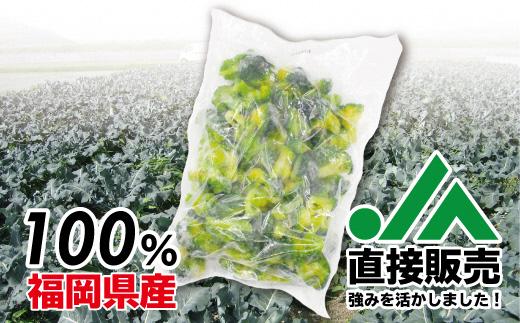 【福岡県産】冷凍ブロッコリー2kg(1kg×2袋)[C2257]