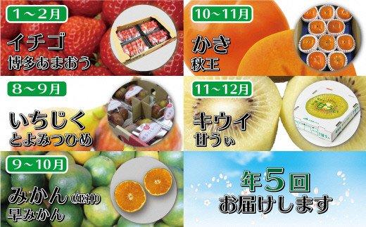 福岡県産フルーツ定期便【年5回コース】【8~9月開始】[C5258]