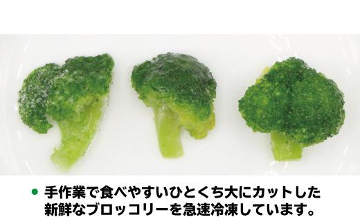 【福岡県産】冷凍ブロッコリー1kg(1kg×1袋)[C2256]