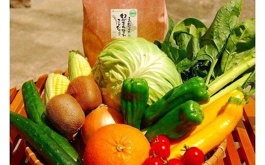 福津むなかた旬のお任せセットお米・野菜・果物9〜10品[A4006]