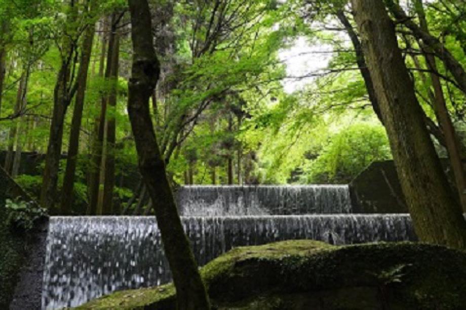 都市基盤(道路、交通、上下水道、住宅・住環境、景観、公園・緑化)及び環境に関する事業