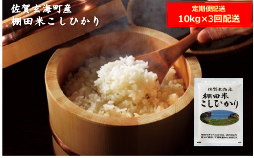 棚田米こしひかり定期便(10kg×3ヶ月)