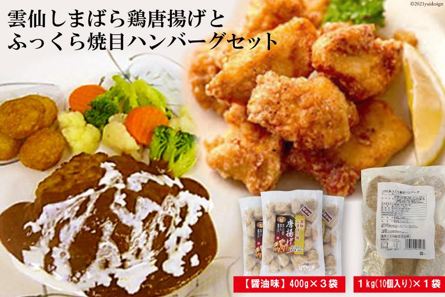 雲仙しまばら鶏唐揚げとふっくら焼目ハンバーグセット