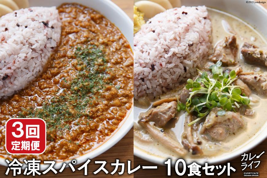 【3回定期便】冷凍スパイスカレー10食セット<カレーライフ>【長崎県雲仙市】