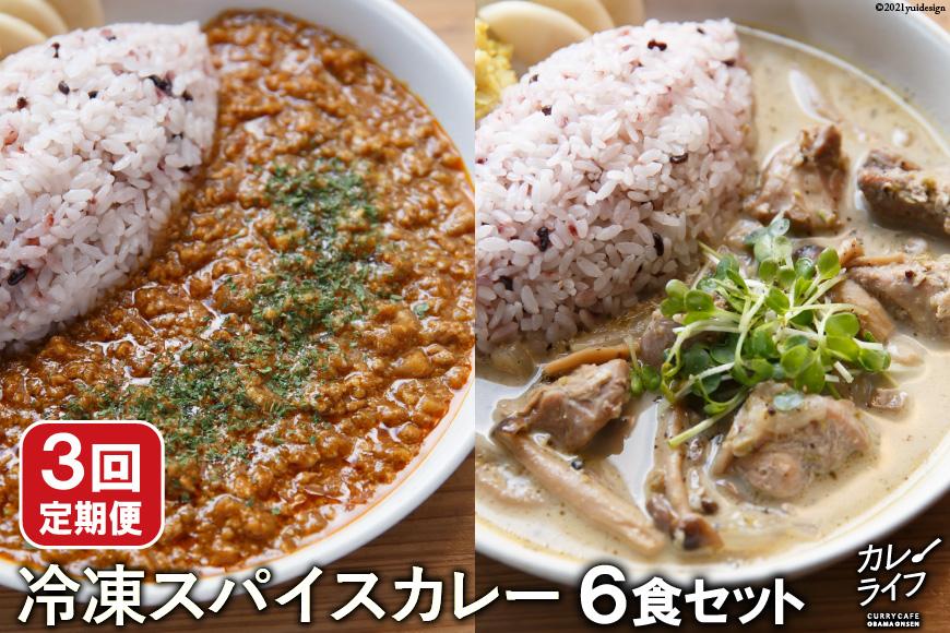 【3回定期便】冷凍スパイスカレー6食セット<カレーライフ>【長崎県雲仙市】