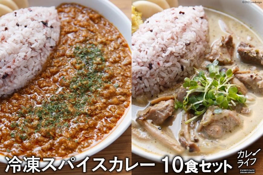 冷凍スパイスカレー10食セット<カレーライフ>【長崎県雲仙市】
