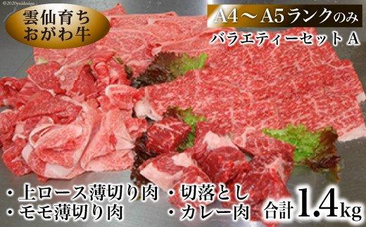 雲仙育ち おがわ牛 バラエティーセットA(A4〜A5ランクのみ使用)