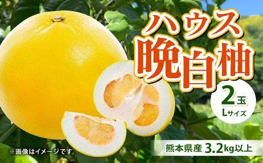 【2021年12月上旬より順次発送】熊本県産 ハウス 晩白柚 2玉 Lサイズ 3.2kg以上 果物 ばんぺいゆ