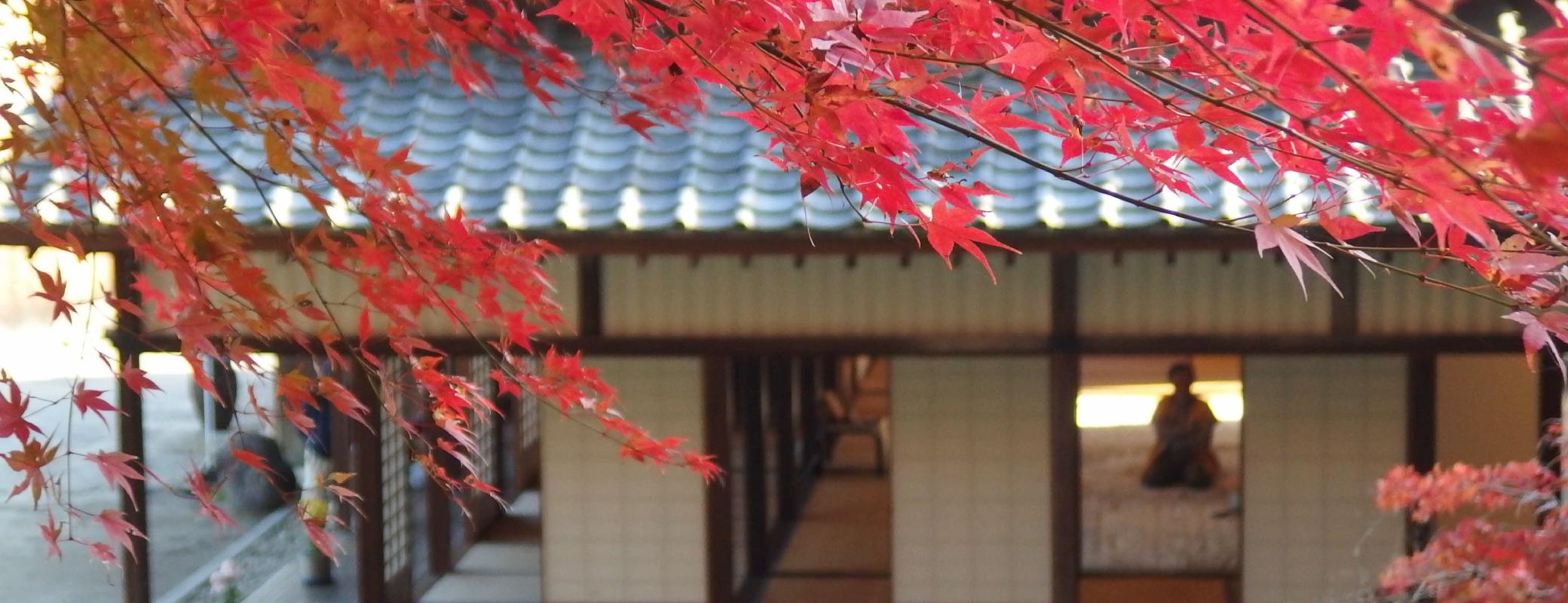 熊本県 南関町