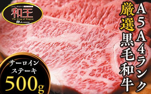 くまもと黒毛和牛 和王 サーロインステーキ 合計500g(250g×2P)