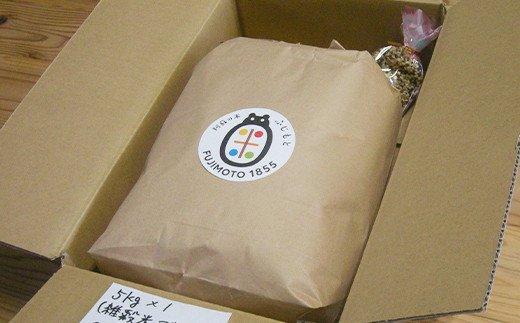 令和3年産特別栽培米 いのちの壱(白米)5kg×1