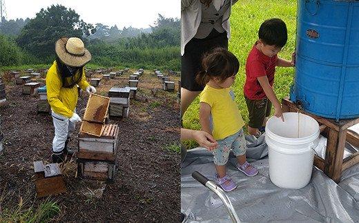 蜂蜜「asohachi」〜南阿蘇からの贈り物〜