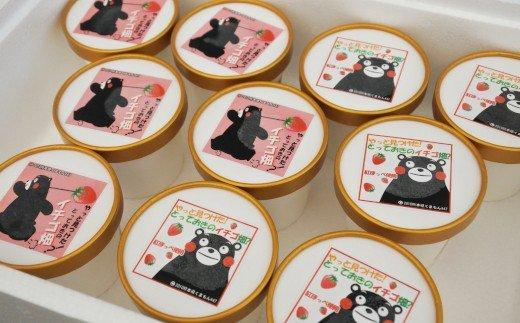 南阿蘇村苺農園から紅ほっぺを使ったアイス2種×5(計10個セット)