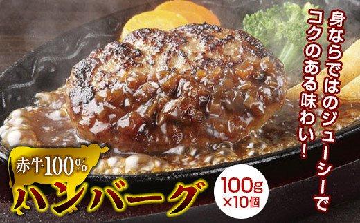 FKK19-161 赤牛100%ハンバーグ(100g×10個)