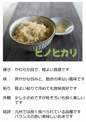 【令和3年度産】熊本県 山都町 ヒノヒカリ 玄米 5kg
