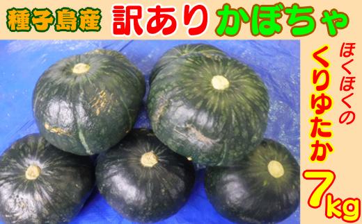 【訳あり】ほくほくかぼちゃ(くりゆたか)7kg 300pt