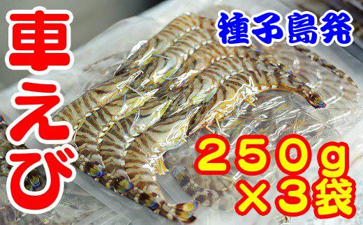 種子島産 車えび(250g×3p=750g)
