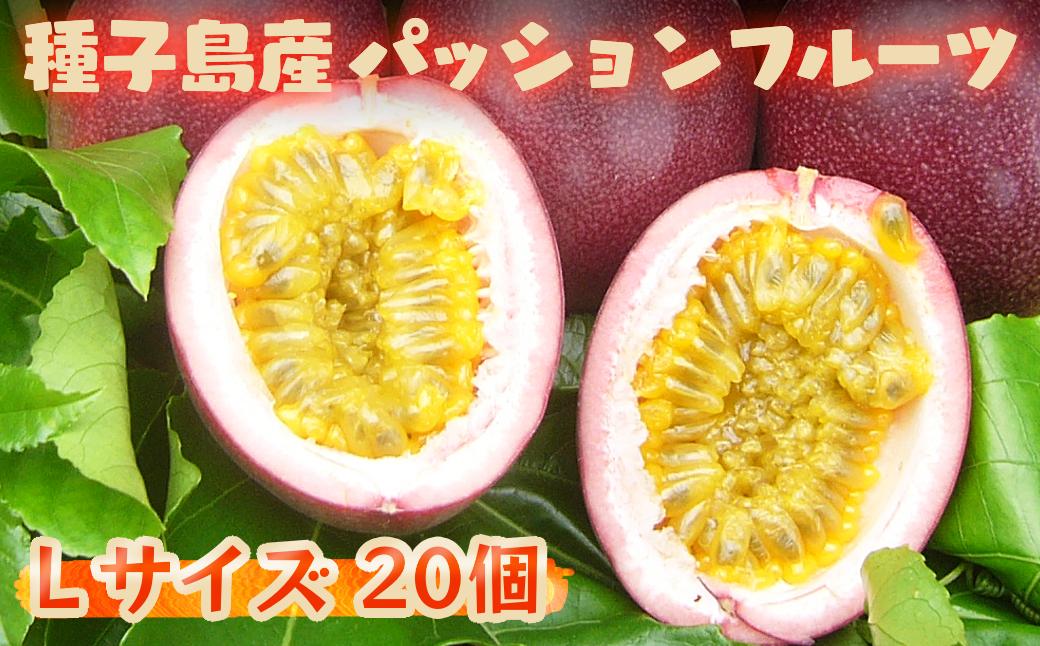 【発送中】種子島産 パッションフルーツ(20個入り)
