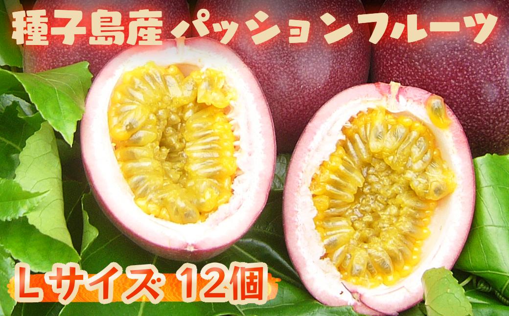 種子島産 パッションフルーツ(12個入り)