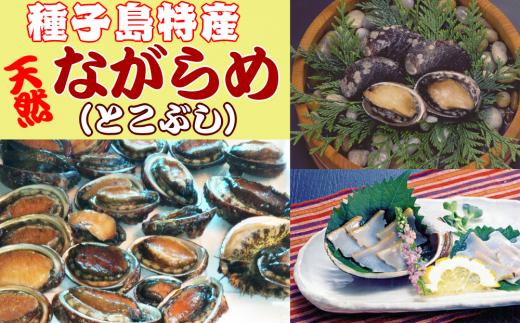 種子島特産 ナガラメ(とこぶし)300g