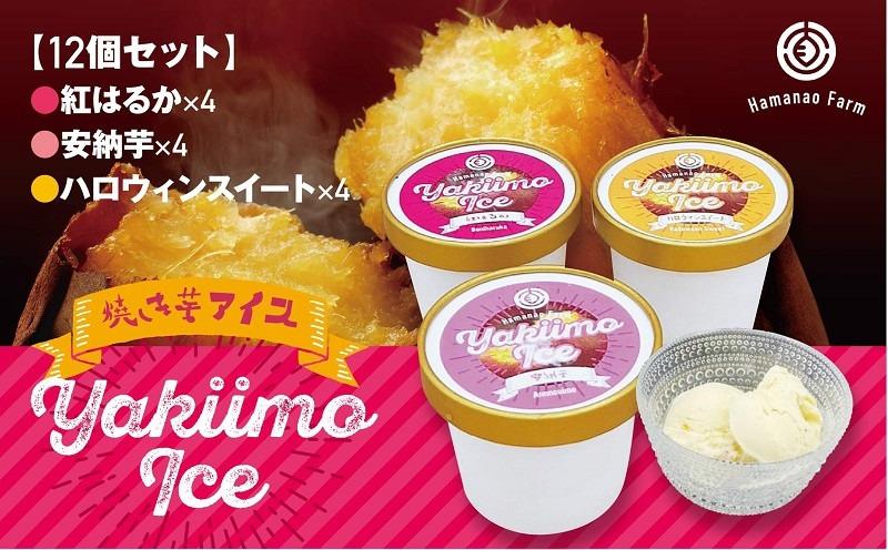 A1-5403/焼き芋アイス 3種類セット(12カップ)