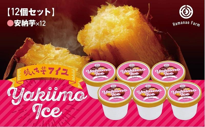 A1-5405/焼き芋アイス 安納芋(12カップ)