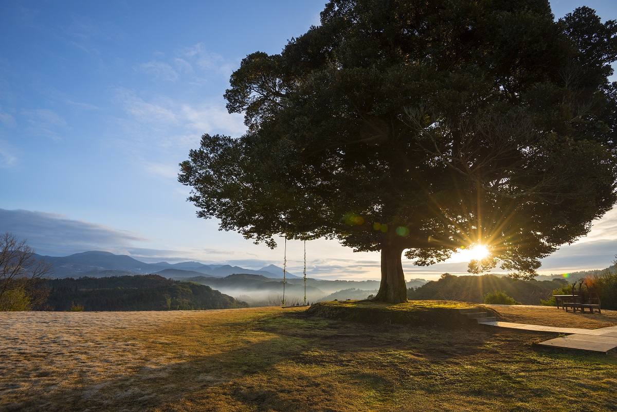 天空の森「霖雨の森」ペア宿泊券(1泊2食付)温泉付きヴィラで1日1組限定の完全プライベート1泊2食付きペア宿泊チケット【天空の森】