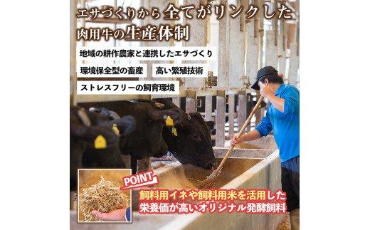 鹿児島県産!南国黒牛切落し250g×2パック・南国スイ−ト豚コマ切れ500g×1パック(計1kg)日常使いしやすい牛肉と豚肉のセットを冷凍でお届け