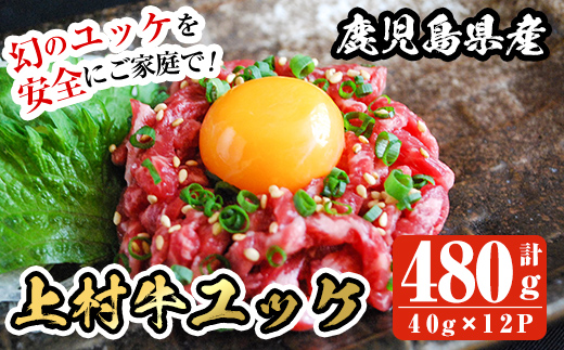 B0-168 上村牛ユッケ(40g×12P・計480g)【カミチク】