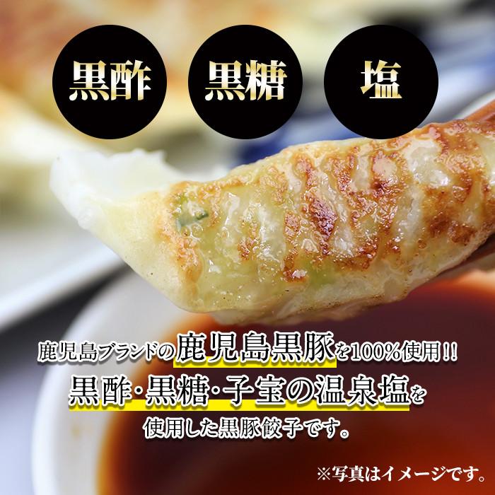 鹿児島黒豚餃子60個(30個×2)国産!鹿児島県産黒豚肉を100%使用した冷凍黒豚ぎょうざ