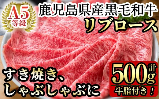 C-041 鹿児島県産黒毛和牛リブロース肉(A-5等級)【九面屋】