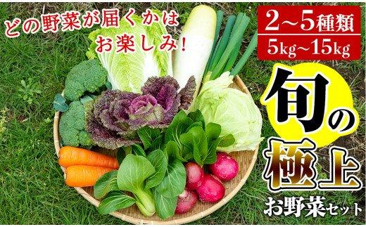 「極野菜」 旬の極上お野菜セット