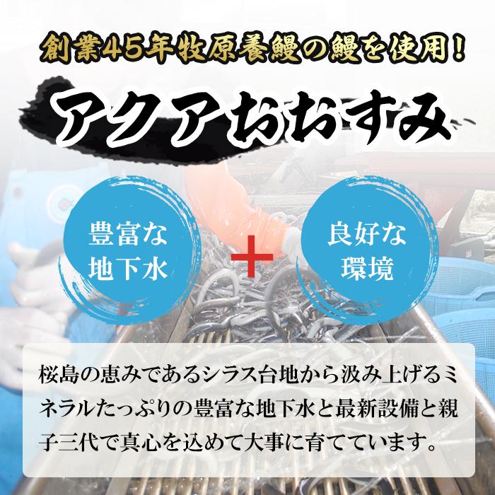【12821】≪訳あり≫東串良町のうなぎ蒲焼<無頭>(約120g~140g×3尾で400g以上、タレ・山椒付)【アクアおおすみ】