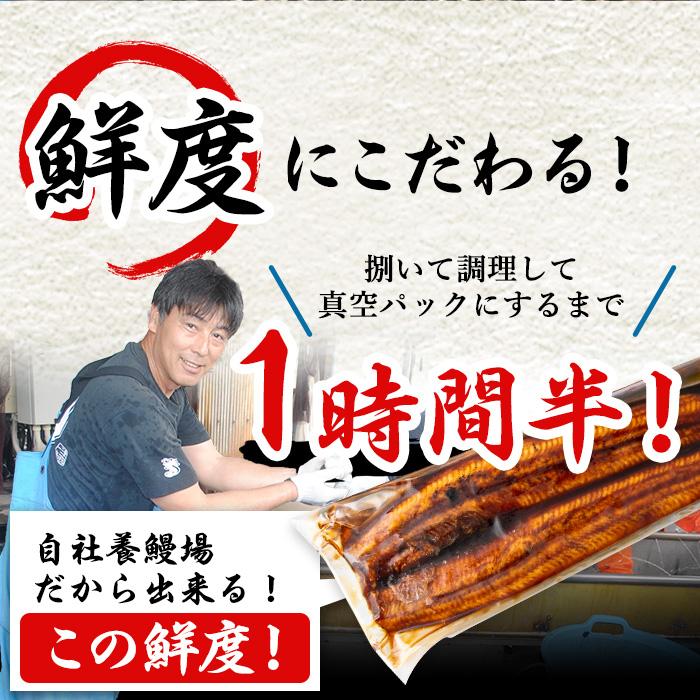 【10814】東串良町の鰻肝の素焼き300g(100g×3P)ときざみ鰻180g(60g×3P)の計6パックセット!うなぎ生産量日本一の鹿児島県!国産で安心!【アクアおおすみ】