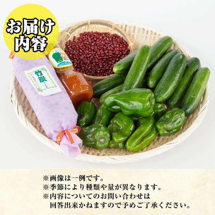 【04808】東串良物産館のおたのしみBOX-Sサイズ!【東串良物産館】