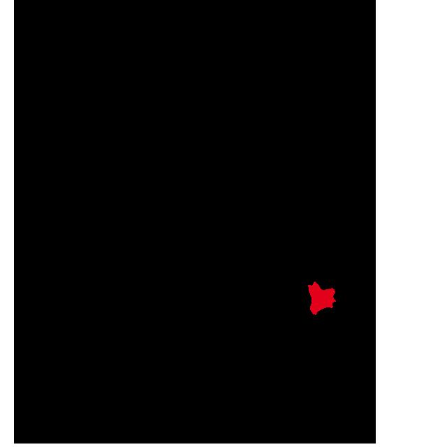 鹿児島県南種子町
