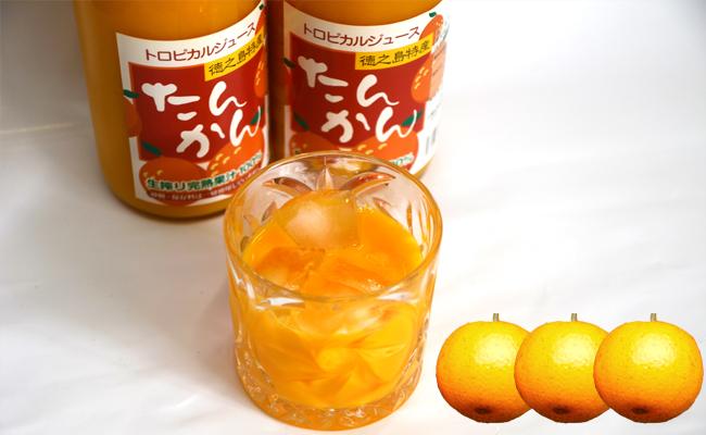 【鹿児島県】徳之島天城町産~宝果樹園のたんかんジュース~3本セット