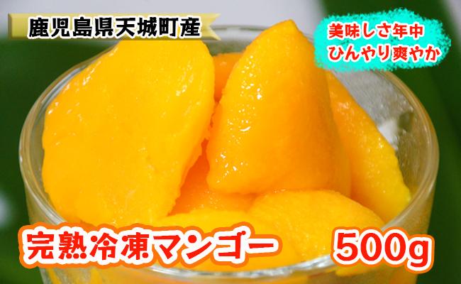 【鹿児島県天城町】天城町産冷凍マンゴー500g