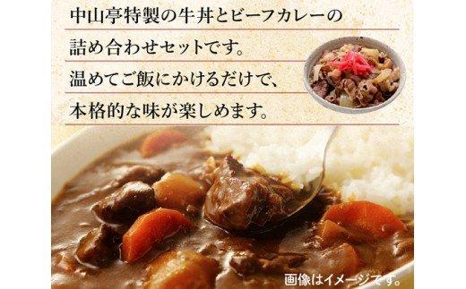 中山亭特製牛丼・カレー詰め合わせB