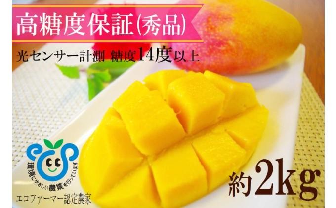 【2021年発送】高糖度保証!農園ファイミールの高級 マンゴー てぃらら(約2kg)3~5玉