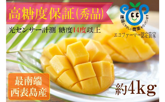 【2021年発送】高糖度保証!!農園ファイミールの濃厚 アップルマンゴー 約4kg(8~12玉入り)