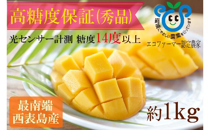 【2021年発送】高糖度保証!!農園ファイミールの濃厚 アップルマンゴー 約1kg(2~3玉入り)