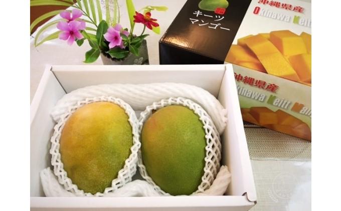 【2021年発送】高糖度保証!農園ファイミールの希少品種濃密 キーツマンゴー 約1.8kg