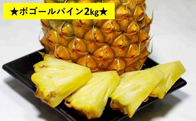 """【2021年発送】パイナップルはちぎって食べる?""""厳選"""" ボゴール 約2kg(3玉)"""