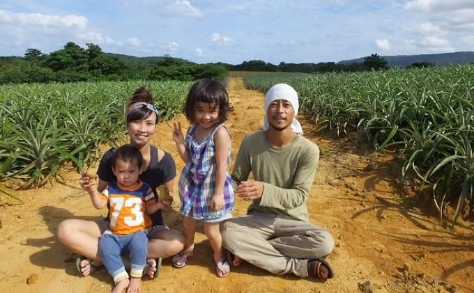 【2021年発送】世界で3ツ星 西表島ひらい農園の濃密 ピーチパイン 約3kg(3~4玉)