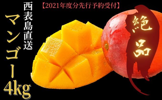2021年発送『プレミアムな美味しさ』アップルマンゴー 約4kg