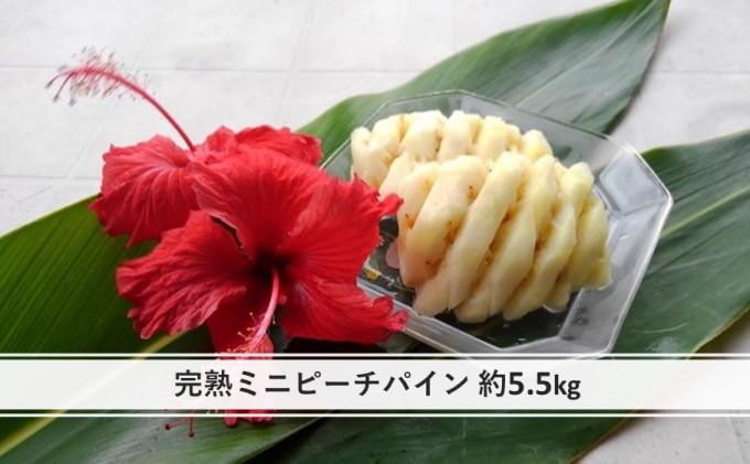 【2021年発送】ちゅら西表島産!!完熟 ミニ ピーチパイン 約5.5kg
